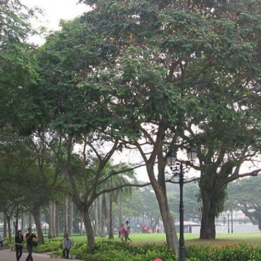 Parc de l'Esplanade