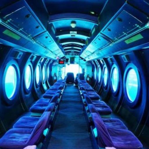 Whale Submarine Maldives