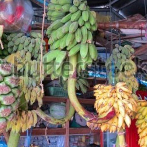 Local Market Maldives